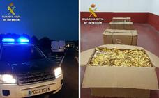 Cinco detenidos por contrabando cuando transportaban 470 kilos de hoja de tabaco en Toril