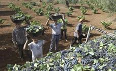 Los agricultores extremeños reciben 517 millones del Feaga hasta el 31 de agosto