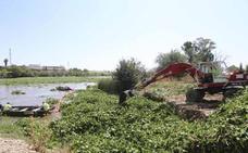 Badajoz pide una auditoría sobre los 32 millones gastados contra el camalote