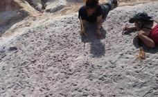 Cocodrilos de hace 95 millones de años en Guadalajara