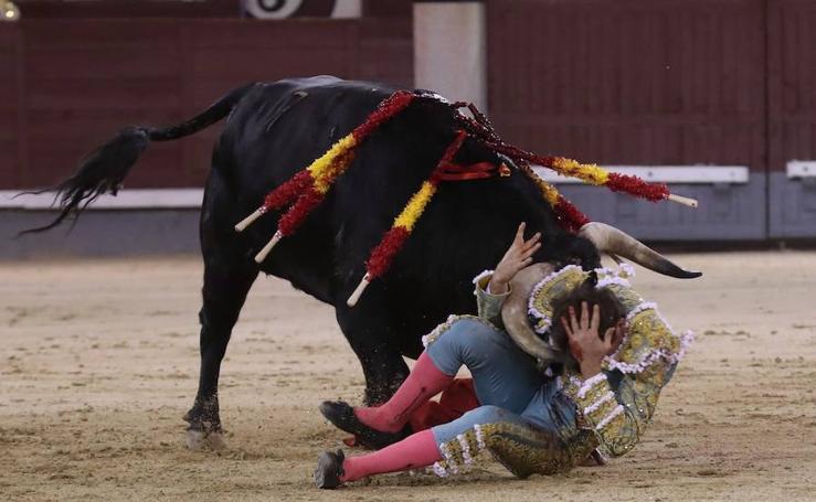 Ginés Marín sufre una cornada en el rostro en Las Ventas