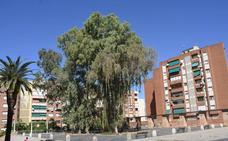 El PSOE de Badajoz critica el retraso en la licitación para remodelar la plaza de Santa Marta