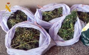 Tres detenidos tras arrojar bolsas con diez kilos de marihuana desde un piso de Badajoz
