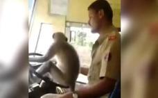 Mono conductor