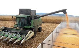 UPA pide a los agricultores que almacenen y no vendan el maíz por la especulación de precios
