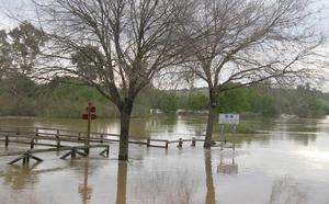 Sale a licitación el sistema que detecta a tiempo real el riesgo de inundaciones en la región
