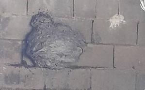 Aparece una colmena de avispa asiática en La Parra