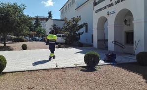 Hoy se abre el plazo para pedir un empleo del Plan Social en Almendralejo