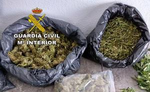 La Guardia Civil localiza 9 kilos de marihuana en una casa de Hoyos tras auxiliar a su propietaria en una caída
