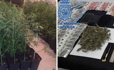 Cuatro detenidos por la Policía Nacional en dos operaciones antidroga en Cáceres y Mérida
