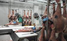 Los impulsores del gran matadero de ibérico prevén iniciar las obras a comienzos de 2019