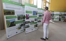Cicytex presenta una muestra de trabajos sobre el campo y la agroindustria