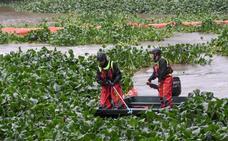 La lucha contra el camalote desde 2004 ha costado más de 30 millones