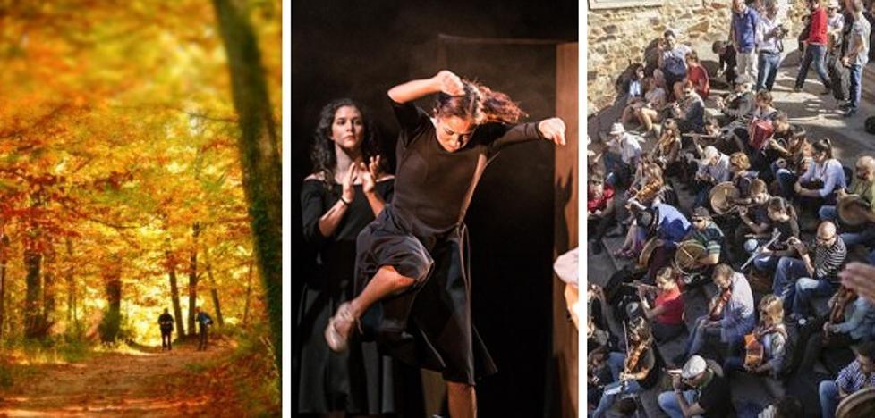 Otoño Mágico, teatro y música irlandesa