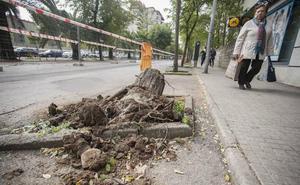 El inicio de los trabajos en la avenida Virgen de Guadalupe de Cáceres aviva la controversia