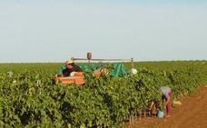 Un nuevo paso para las tierras de regadío en Monterrubio de la Serena