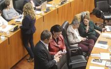 La Asamblea aprueba por unanimidad la ley de las entidades sociales