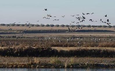 Extremadura promociona su turismo de naturaleza en Taiwán, Francia y Holanda