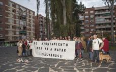 Protesta para salvar los eucaliptos de Santa Marta