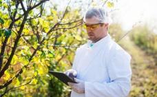 BBVA facilita la aplicación de tecnología punta en la agricultura