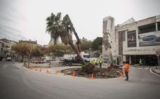 La obra de Galarza obliga a trasplantar la palmera de la plaza