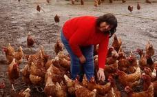 «No soporto ver a una gallina enjaulada»
