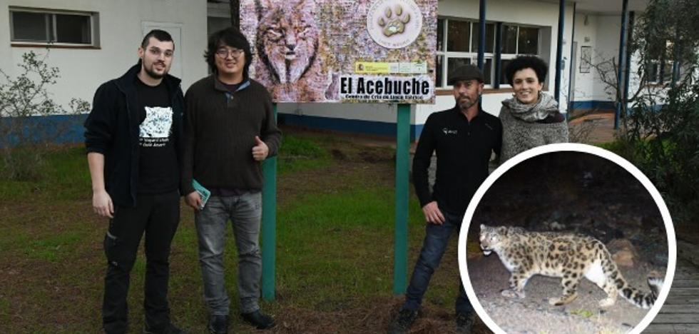 Extremeños a la captura del leopardo de las nieves