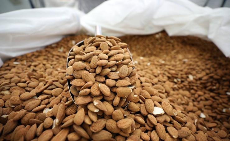 El consumo de almendra afianza el crecimiento del cultivo en la región