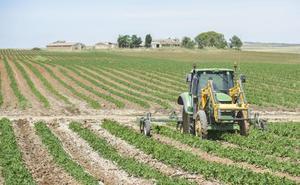 Ya se pueden solicitar a la Junta las ayudas de 2018 para las asociaciones agrarias