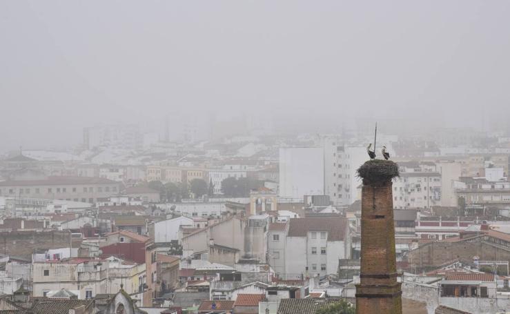 Badajoz amanece cubierta de niebla