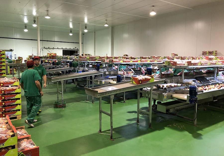 La Tarjeta Agrocoop facilita la adquisición de insumos por parte de los agricultores y ganaderos