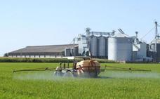 COAG alerta de los bajos precios del maíz y del arroz