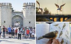 Hoy, visita guiada y rutas ornitológicas en Badajoz