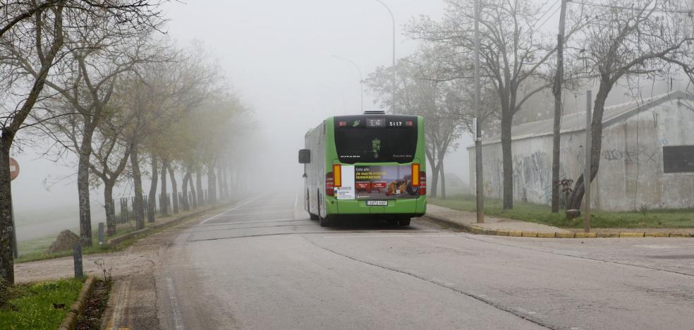 Las familias con cinco hijos o más podrán viajar gratis en el bus urbano de Cáceres