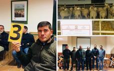 La Diputación de Badajoz subasta 36 cabezas de ganado ovino de la raza merina de 'La Cocosa'