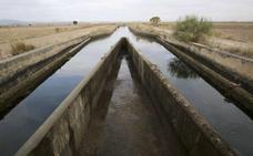 Una UTE de tres empresas redactará el proyecto de regadío de Tierra de Barros