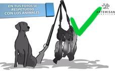 Artemisan elabora una guía de buen uso de redes sociales para cazadores
