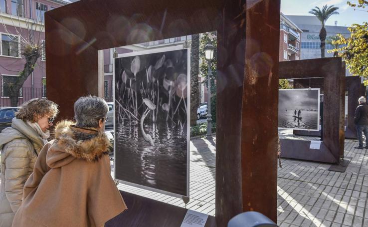 La exposición 'Génesis' de Sebastião Salgado llega a Badajoz
