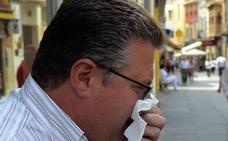 Vergeles dice que la gripe en la región «está controlada» y prevé que el pico llegue a finales de enero