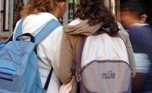 Al menos 133 niños sufrieron acoso escolar en Extremadura entre 2012 y 2017