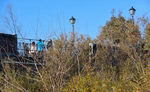 La maleza impide ver el puente de Palmas en Badajoz