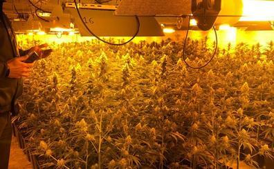 El 70% de toda la luz consumida en Casar de Miajadas era para las plantaciones de marihuana