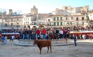 Los Carnavales contarán con tres festejos taurinos los días 2 y 3 de marzo, uno destinado a mujeres