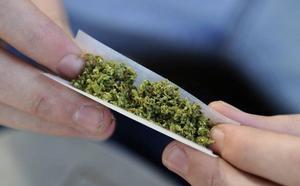 Los genes favorecen el consumo de cannabis en personas con hiperactividad