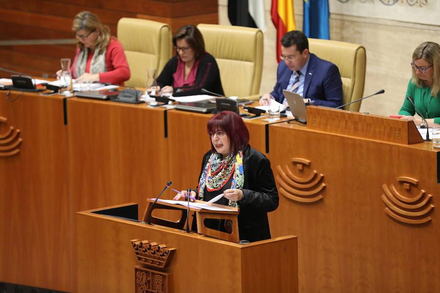 La ley que prohíbe los circos con animales continúa su tramitación en la Asamblea