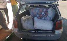 Tres detenidos por el robo de 2.100 kilos de aceitunas en Alcazaba