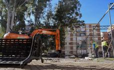 Podemos pretende detener la tala de los eucaliptos de Santa Marta
