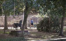 El Parque del Príncipe de Cáceres tendrá videovigilancia y se arreglará el jardín de Maltravieso