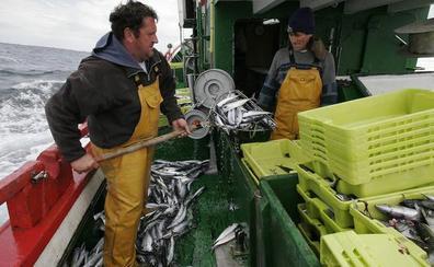 La UE se prepara para el cierre de las aguas británicas a sus pescadores por un 'brexit' sin acuerdo