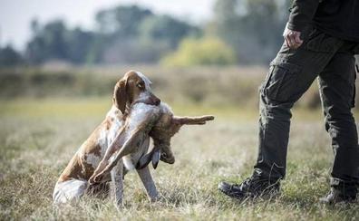 Fedexcaza hace un balance negativo de la campaña de caza menor